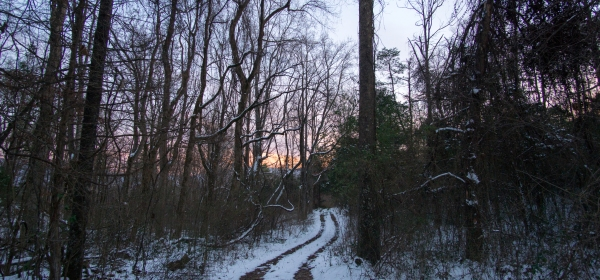 Snowy driveway with sunset over the Smokies