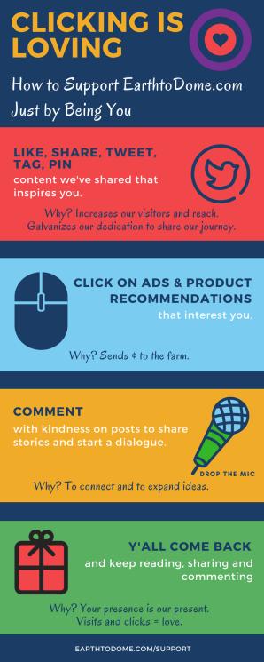 Infographic describing ways to support earthtodome.com