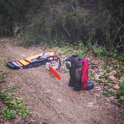 Stihl chainsaw and safety gear