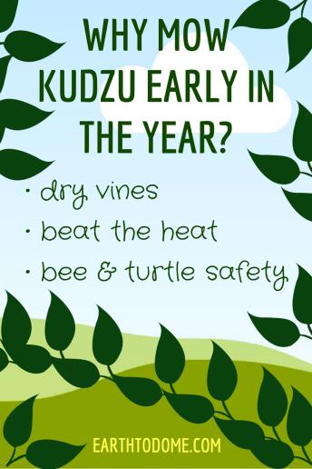kudzu mowing tips