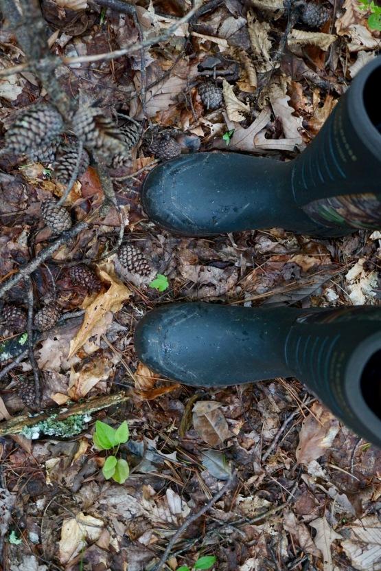 LaCrosse rattlesnake boots