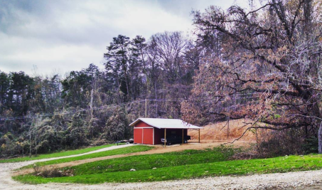 green grass and red barn in winter