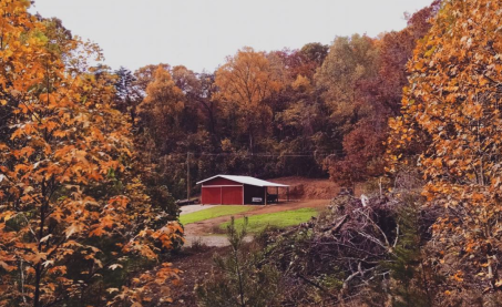 red barn with fall colors and green grass