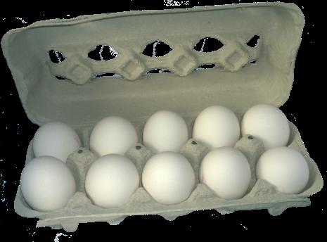 egg-carton-788022_1920.png