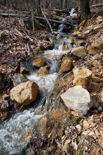 wet-weather creek in the Smokies