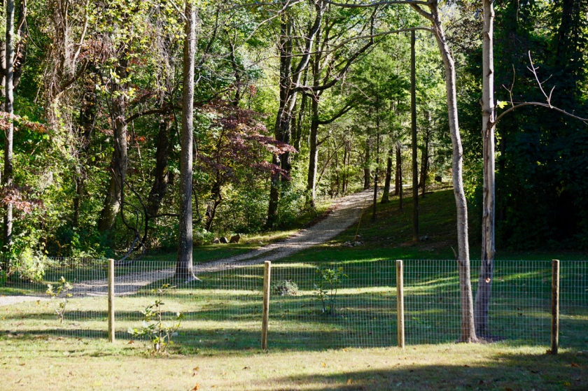 welded wire fence with posts in front of gravel driveway